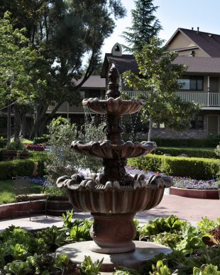 Paso Robles Inn Steakhouse Announces New Menu