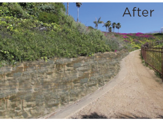 California Coastal Trail Pathway After Martin Resorts Restoration Project